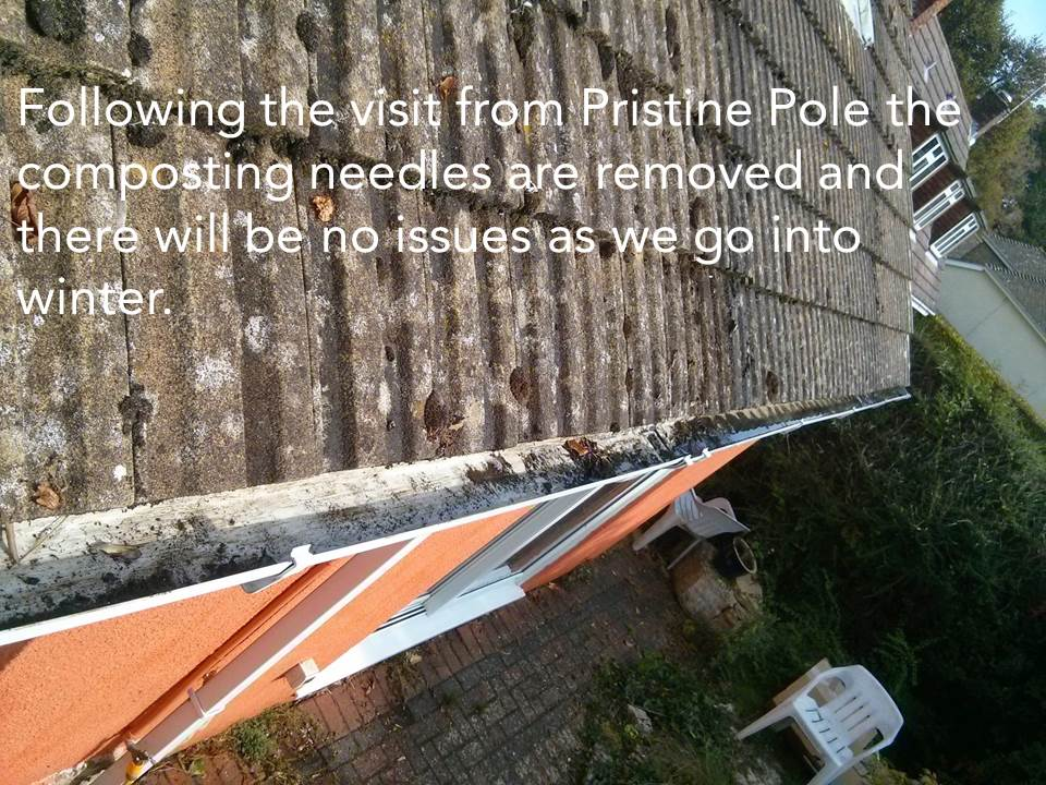 Gutter Clearance Swanage Dorset